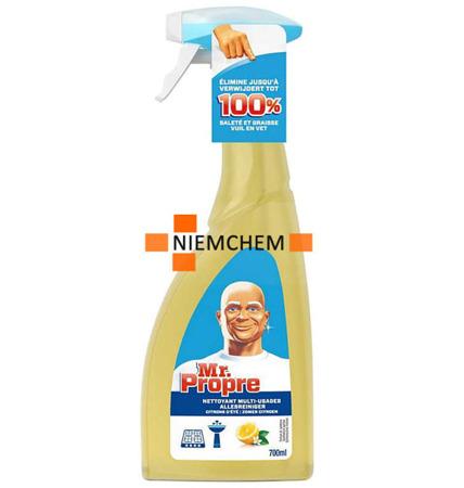 Mr. Proper Uniwersalny Spray do Czyszczenia 700ml BE